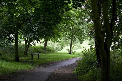 walk in park