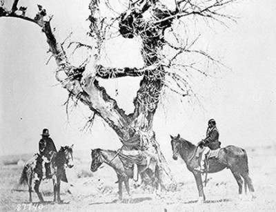 Tree burial of Ogala Sioux