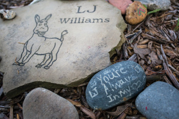 L.J.'s family surrounded his memorial stone with rocks carrying special notes