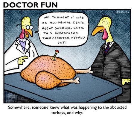 Accidental-Turkey-Death (1)