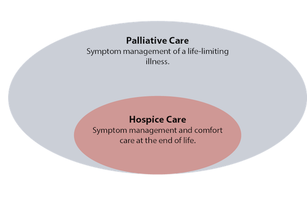 palliative care situation reflection Palliative care is the process of providing pain relief and comfort to a person with a serious or fatal illness while palliative care is in mainstream medical use, as with all medical issues, patients may have to speak up for themselves or have an advocate to speak on their behalf in order to receive it.